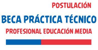 Beca Práctica Técnico Profesional Educación Media