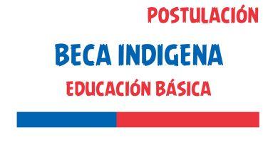 beca indigena educacion basica