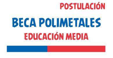 beca polimetales educacion media