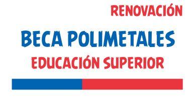 renovacion Beca Polimetales Educacion Superior
