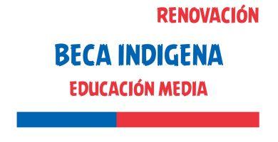 renovacion beca indigena educacion media