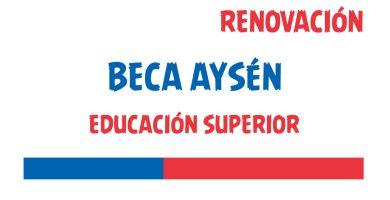 renovacion beca aysen educacion superior